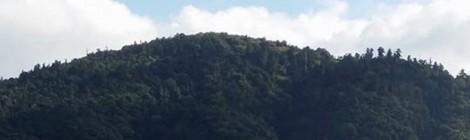 今月の三輪山
