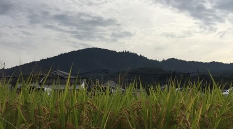 十月の三輪山