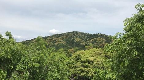 五月の三輪山