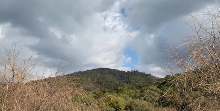 1月の三輪山